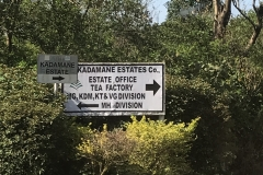Kadmane Estate. Our host for the day.